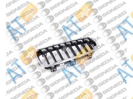 Решетка радиатора (левая) PBM07079GBL